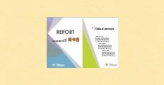 決算報告書、経営報告書、調査報告書、プレゼン資料、会議資料、学会発表資料に最適